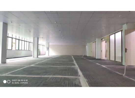 龙华民治油松园林式写字楼600平招租,有政府补贴最高达40元每平