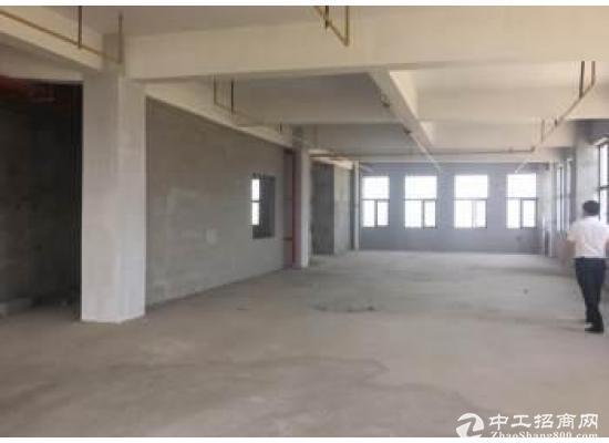 东西湖武汉客厅旁,精装修毛坯均有,可整租可分租图片2