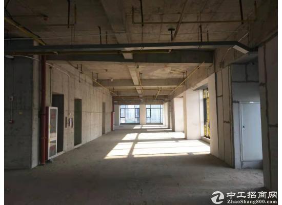 硚口文创园15000平米,可分租,享受政策扶持,配套食堂宿舍图片2