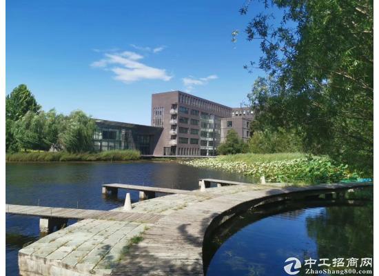 核心区花园式 独栋12300平 适合培训 呼叫中心 企业总部