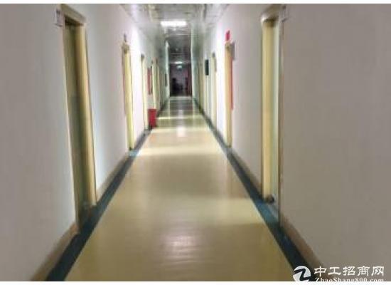 龙岗中心城80m² 高区 简装办公室出租图片1