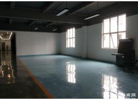 龙岗中心城80m² 高区 简装办公室出租图片2