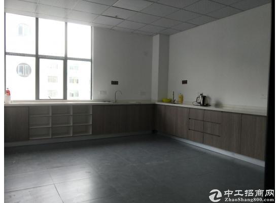 龙岗中心城80m² 高区 简装办公室出租图片5