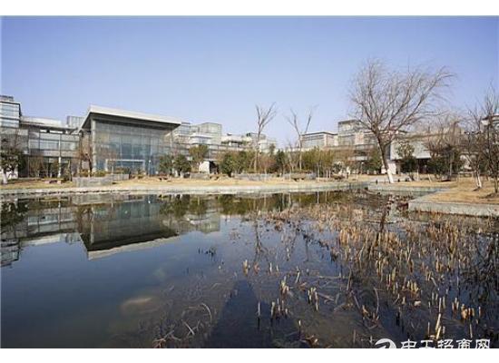 张江集电港339平精装修 可接上下水 带大货梯研发办公图片2