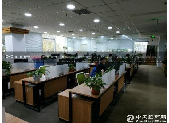 张江集电港339平精装修 可接上下水 带大货梯研发办公图片5