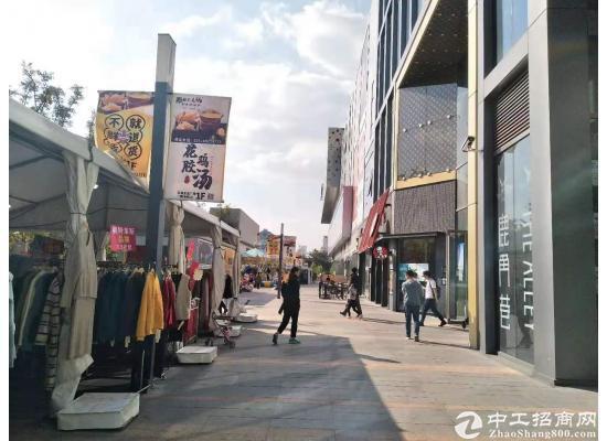 青浦17号地铁覆盖,宝龙商业直招,大平方300平米,