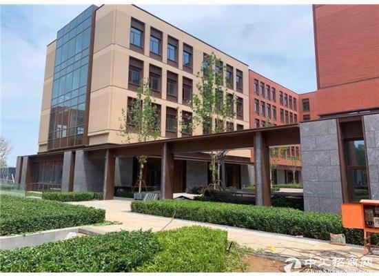 开发商直租地铁口企业独栋 正规产权可注册环评生产研发办公图片4