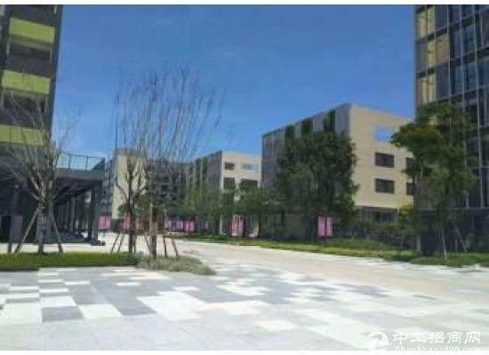 平湖写字楼全新精装修3加1格局图片4