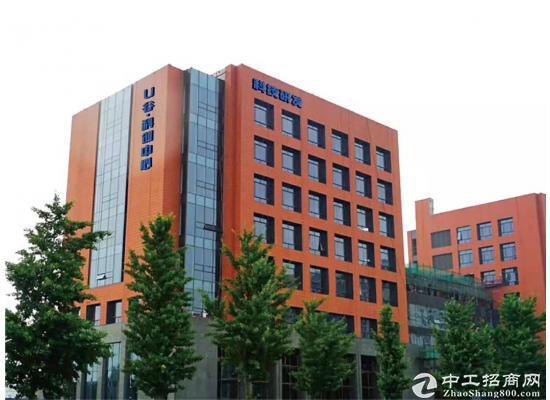 京东大厦总部旁精品办公楼出租图片4