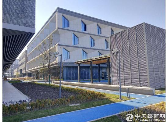 嘉定城区3800平米独栋研发中心