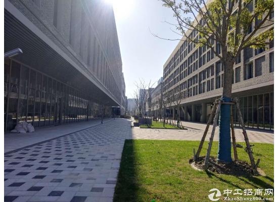 嘉定城区2300平米独栋研发大楼招商图片5