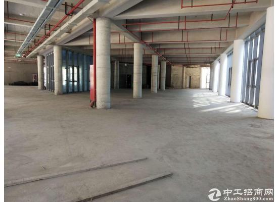 嘉定城区2300平米独栋研发大楼招商图片7