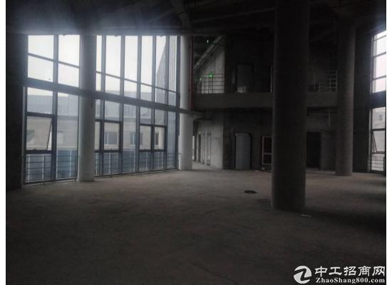 嘉定城区2300平米独栋研发大楼招商图片9