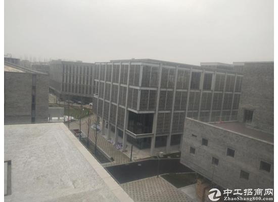 嘉定城区2300平米独栋研发大楼招商图片12