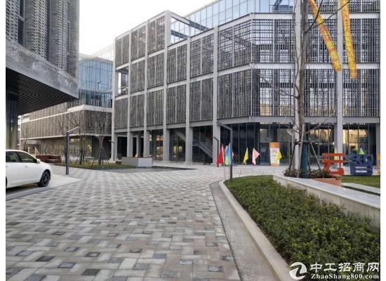 嘉定城区2300平米独栋研发大楼招商图片16