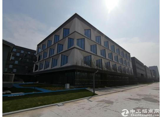 嘉定城北路1000平米独栋研发基地招商图片8