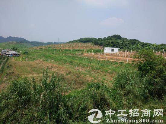 深圳龙岗红本工业用地100000平方米低价出售