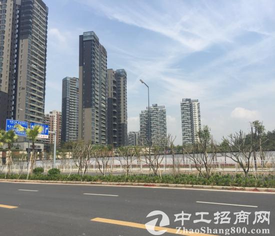 深圳南山前海东角头31万平方米商住地低价出售