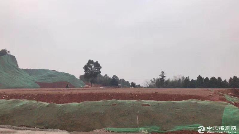 企业加工制造转移 惠阳区镇隆镇国有红本土地出售